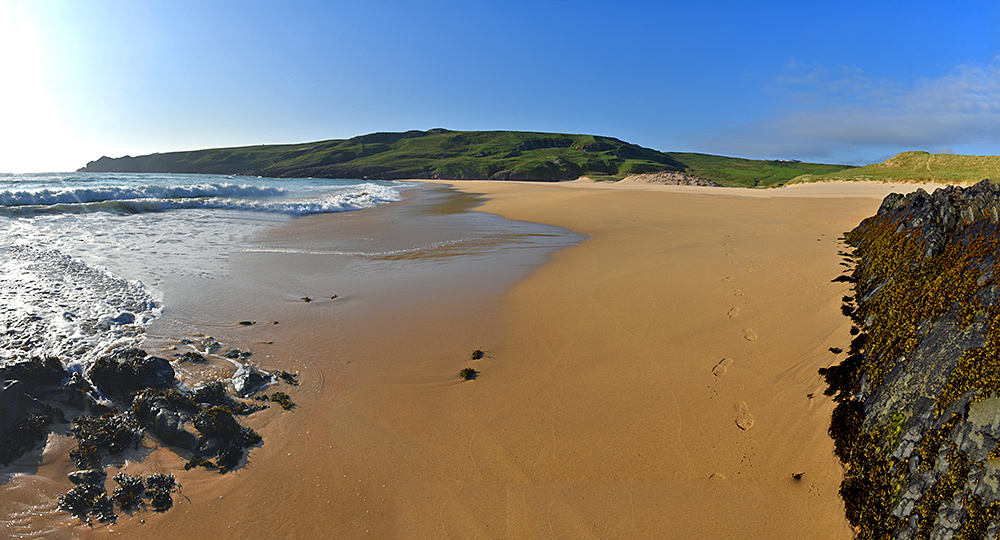 Panoramic picture of a golden sandy beach on a sunny June evening