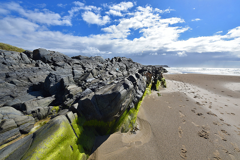 Picture of some black rocks with green algae growing on them on a beach