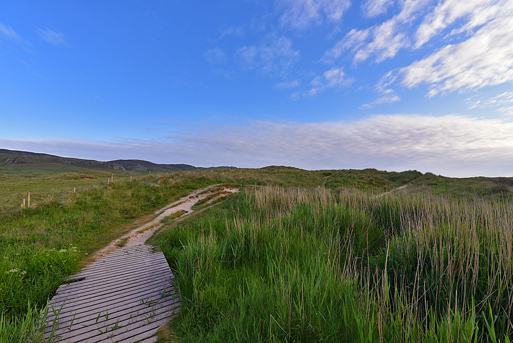 Picture of a small wooden bridge over a stream leading to a path across dunes