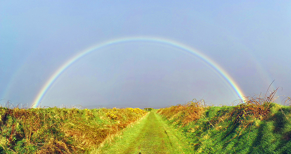 Panoramic picture of a rainbow over a birdwatching hide and the track to it