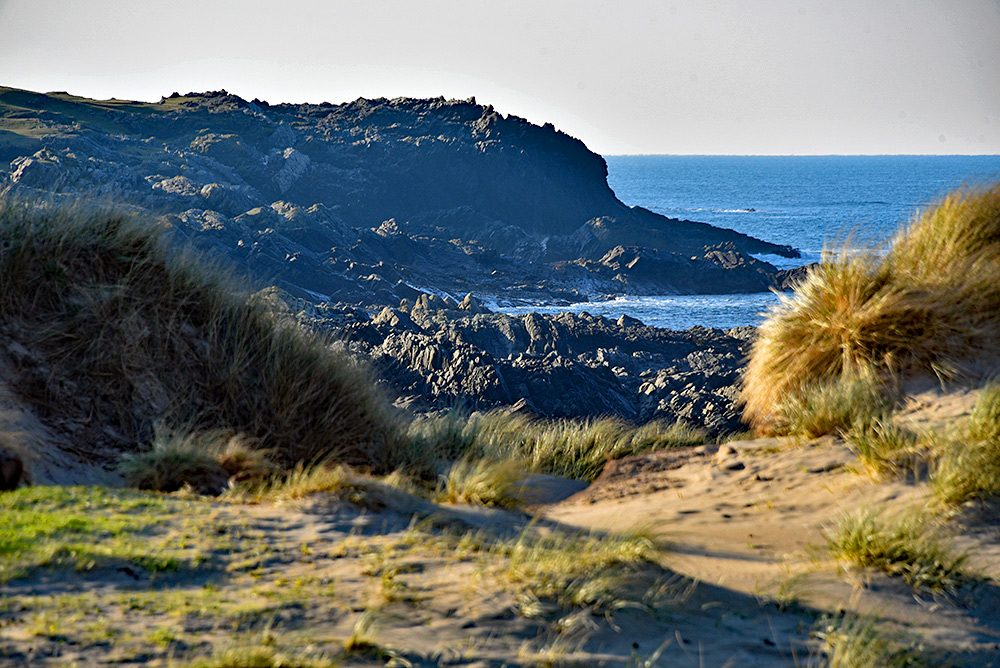 Picture of some coastal cliffs seen behind some dunes