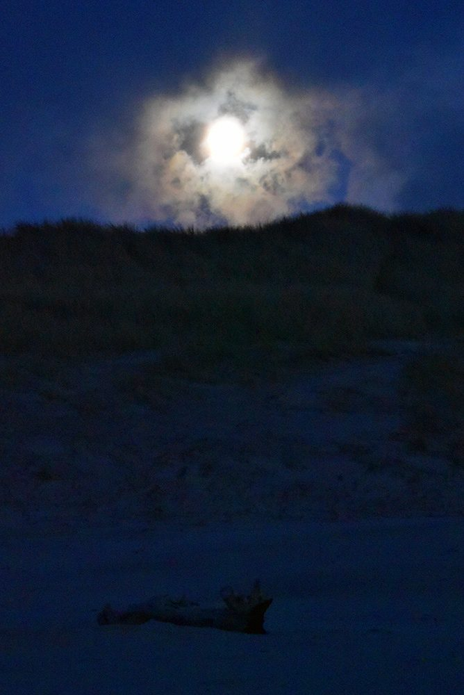 Picture of the Moon rising through clouds over a dune, some driftwood at the foot of the dune