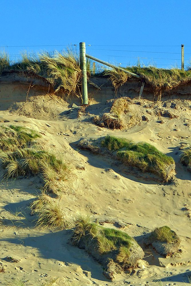 Picture of an exposed fence post at the top of a dune