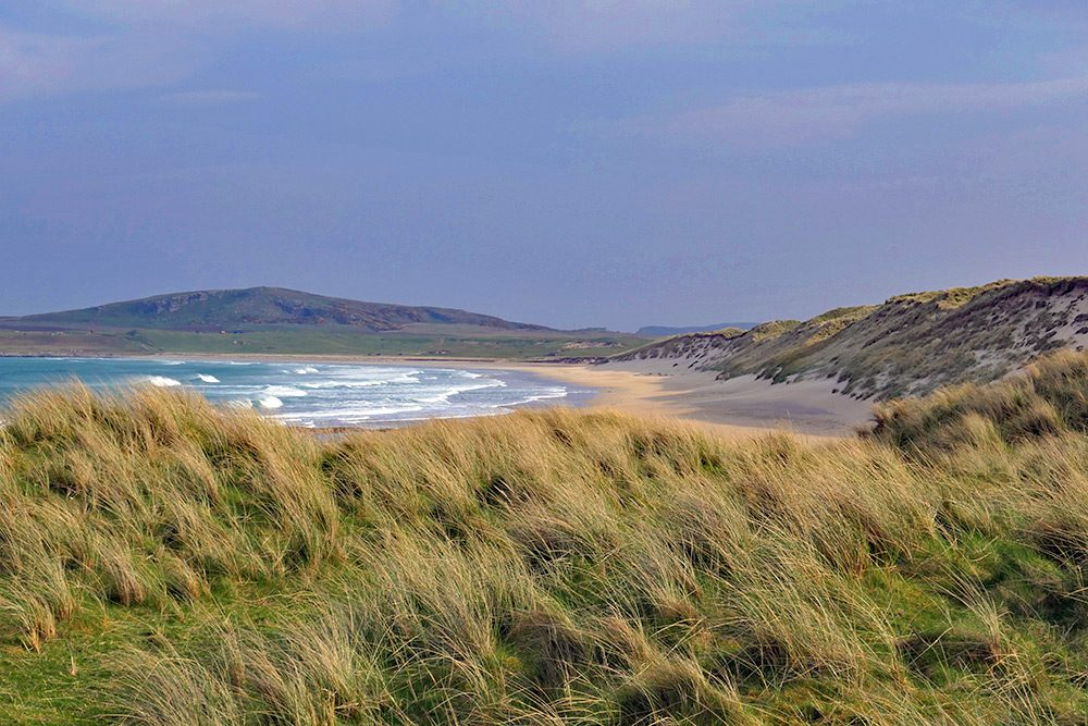 Picture of a beach behind dunes