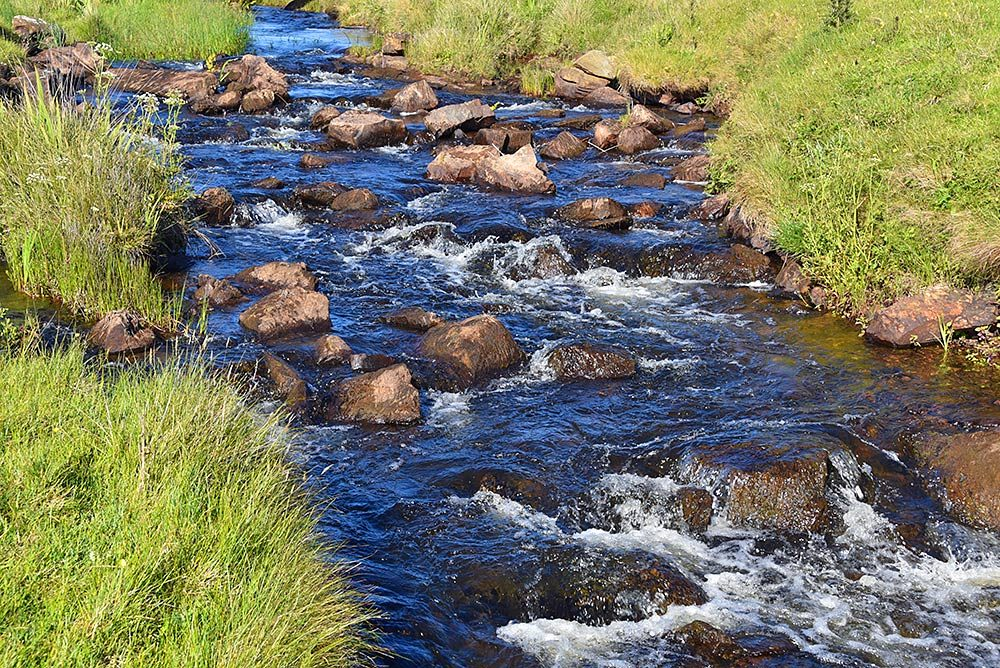 Picture of a small river flowing over rocks, grassy banks on the side