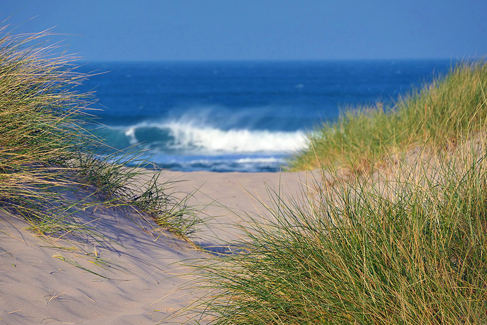Picture of a view through some dunes