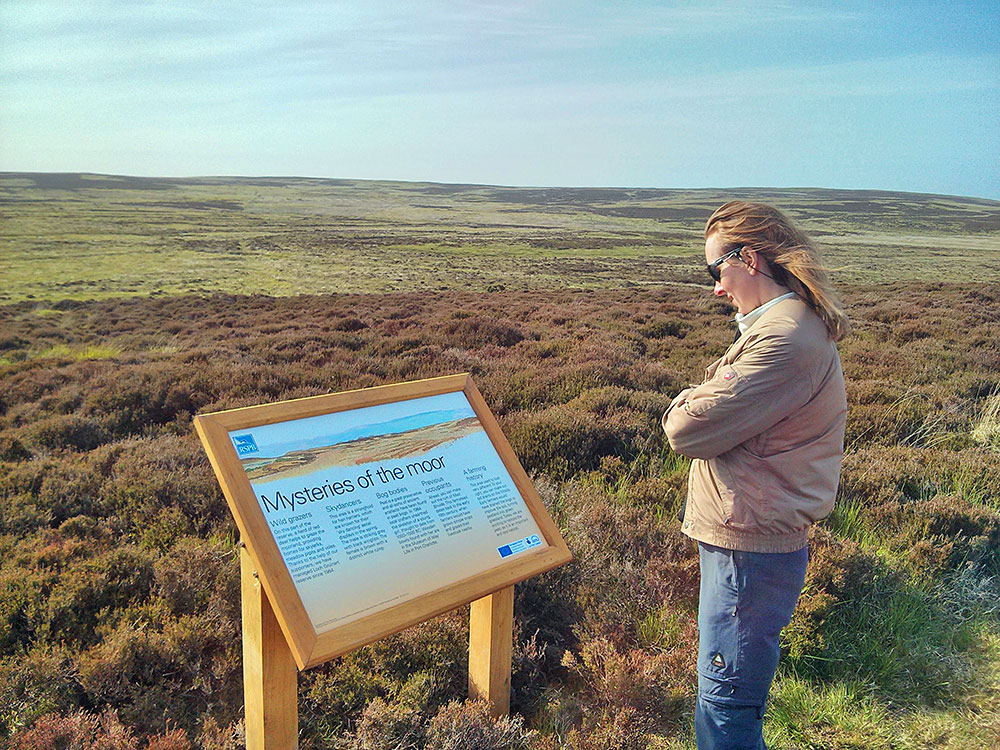 Picture of a woman studying an info board above a moor
