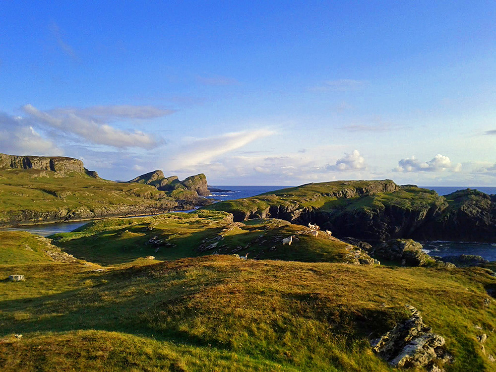 Picture of a rugged coastline with cliffs, inlets, rocks and grassy hills