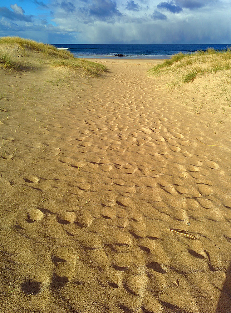 Picture of wet sand on a way through dunes on to a beach