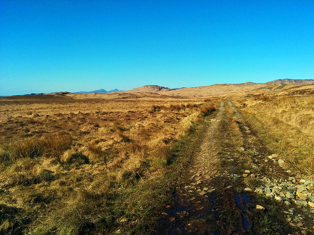 Picture of a rough track in a remote landscape, mountains in the distance