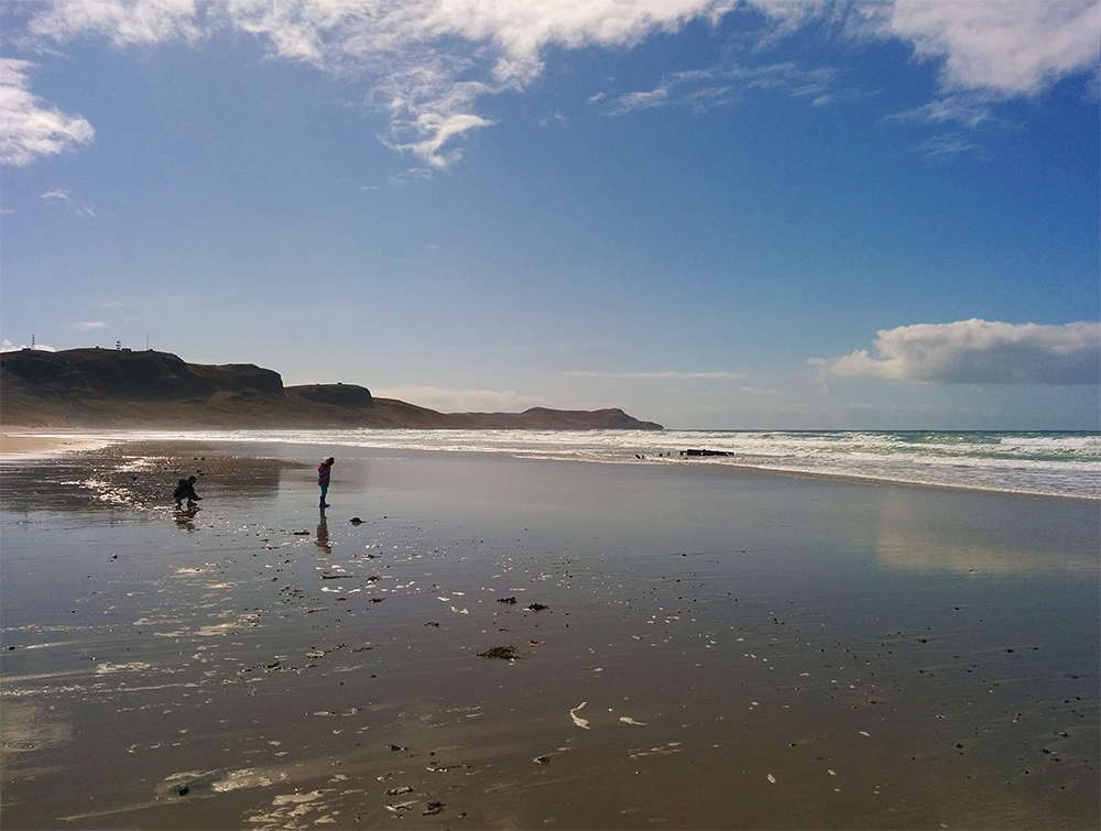Picture of two children on a beach with the tide going out, exploring the wet sands and what they find