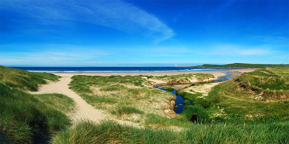 Panoramic picture of a path through dunes next to a stream leading to a beach