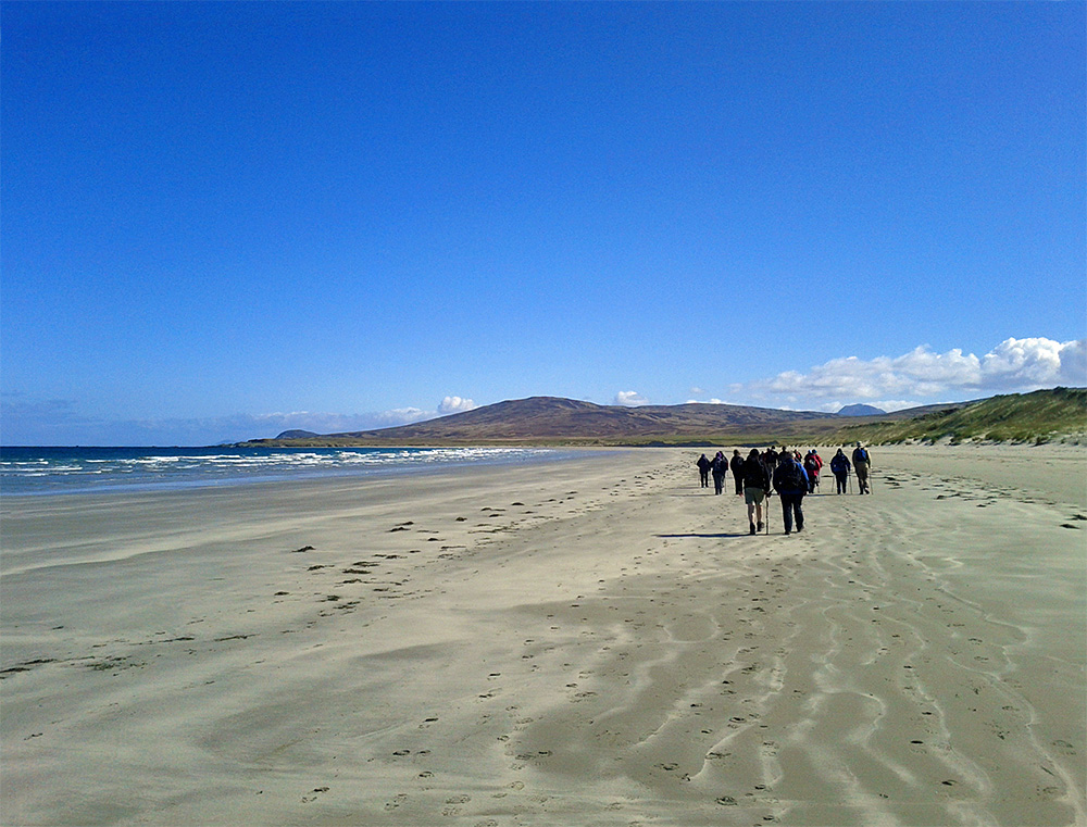 Picture of a group of walkers on sandy beach below dunes