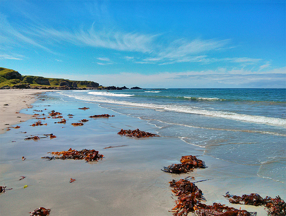 Picture of a sandy beach with some seaweed, low cliffs at the end
