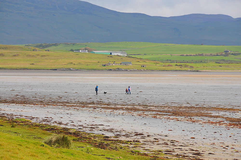 Picture of a family and their dog out on a walk on the floor of a sea loch at low tide