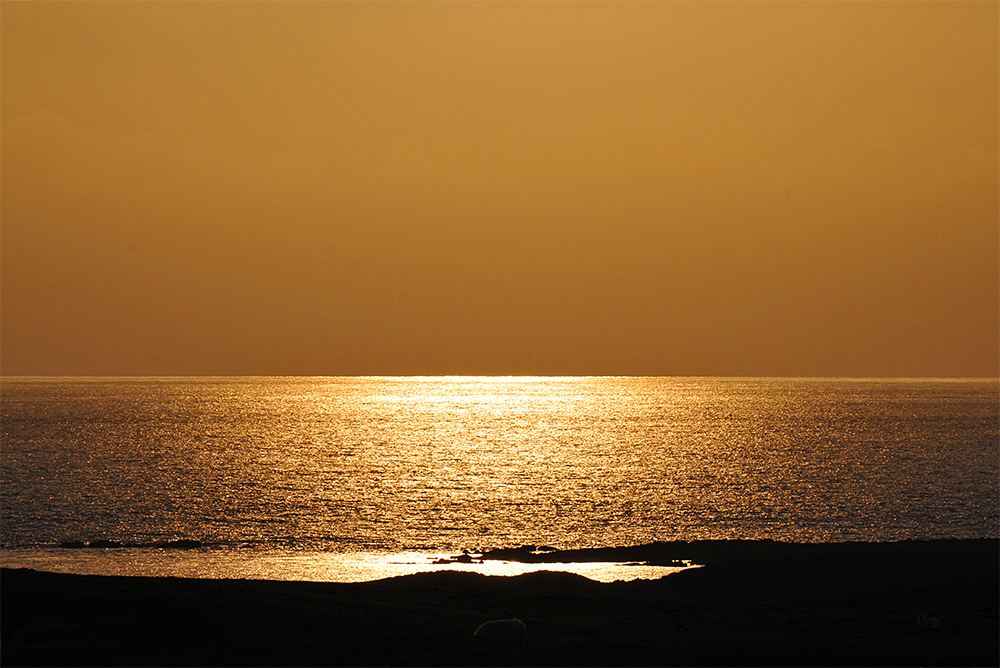 Picture of some mild golden evening light reflecting on the sea off a west facing coast