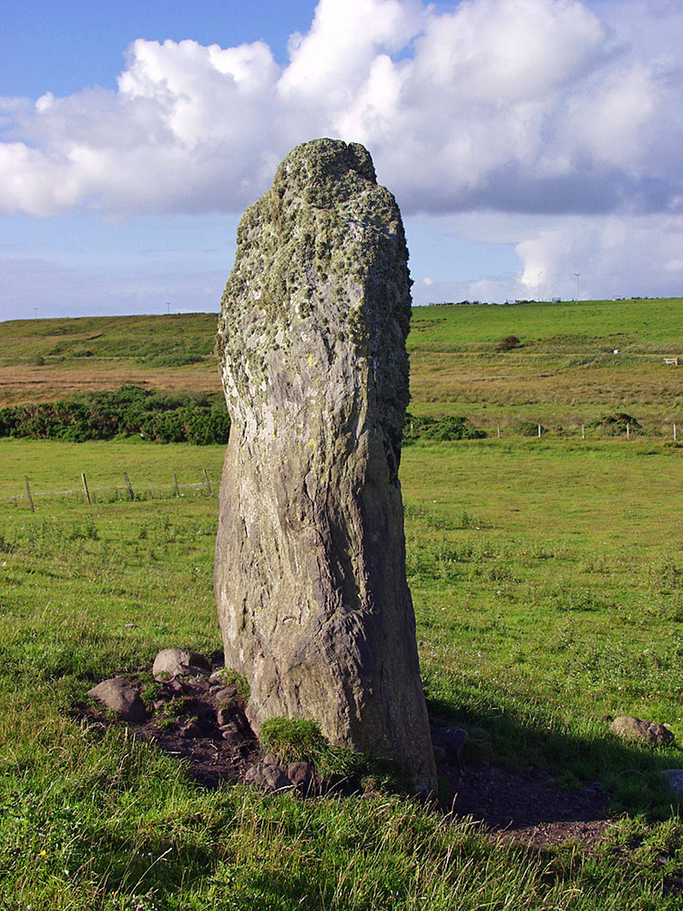 Picture of a standing stone in a field